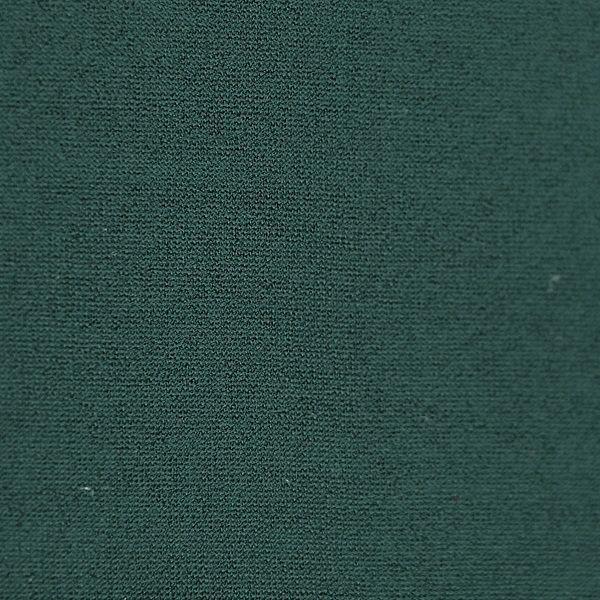 Microfaser Jersey glatt glänzend in dunkelgrün